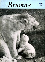 BearStory: Brumas...60 years ago at London Zoo