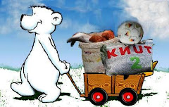 Aufgepasst... Knut  ist überall !