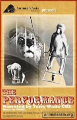 Animals Asia Campaign