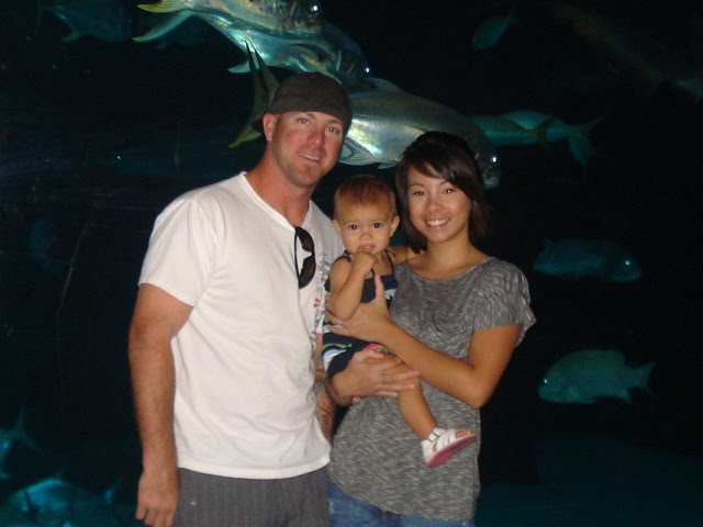 Family Fun Day at the aquarium