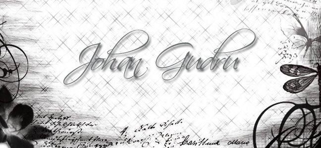 Johan Gudru