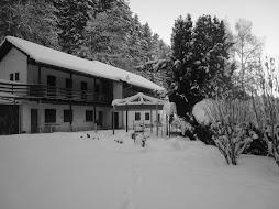 hiver B&W