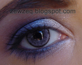 Ciba Vision Elegance Grey