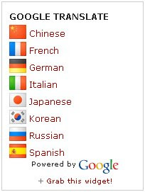Screenshot of Google Translate widget