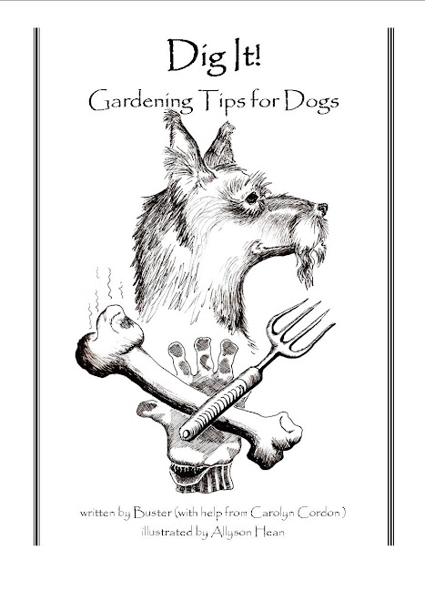 Dig It! Gardening Tips for Dogs