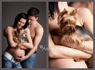 Lapseootaja koos koeraga fotostuudios, koera portree