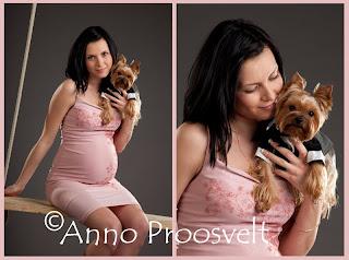 Roosa kleidiga lapseootaja ja koer fotostuudio kiigel