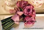 As flores de Momentos Meus