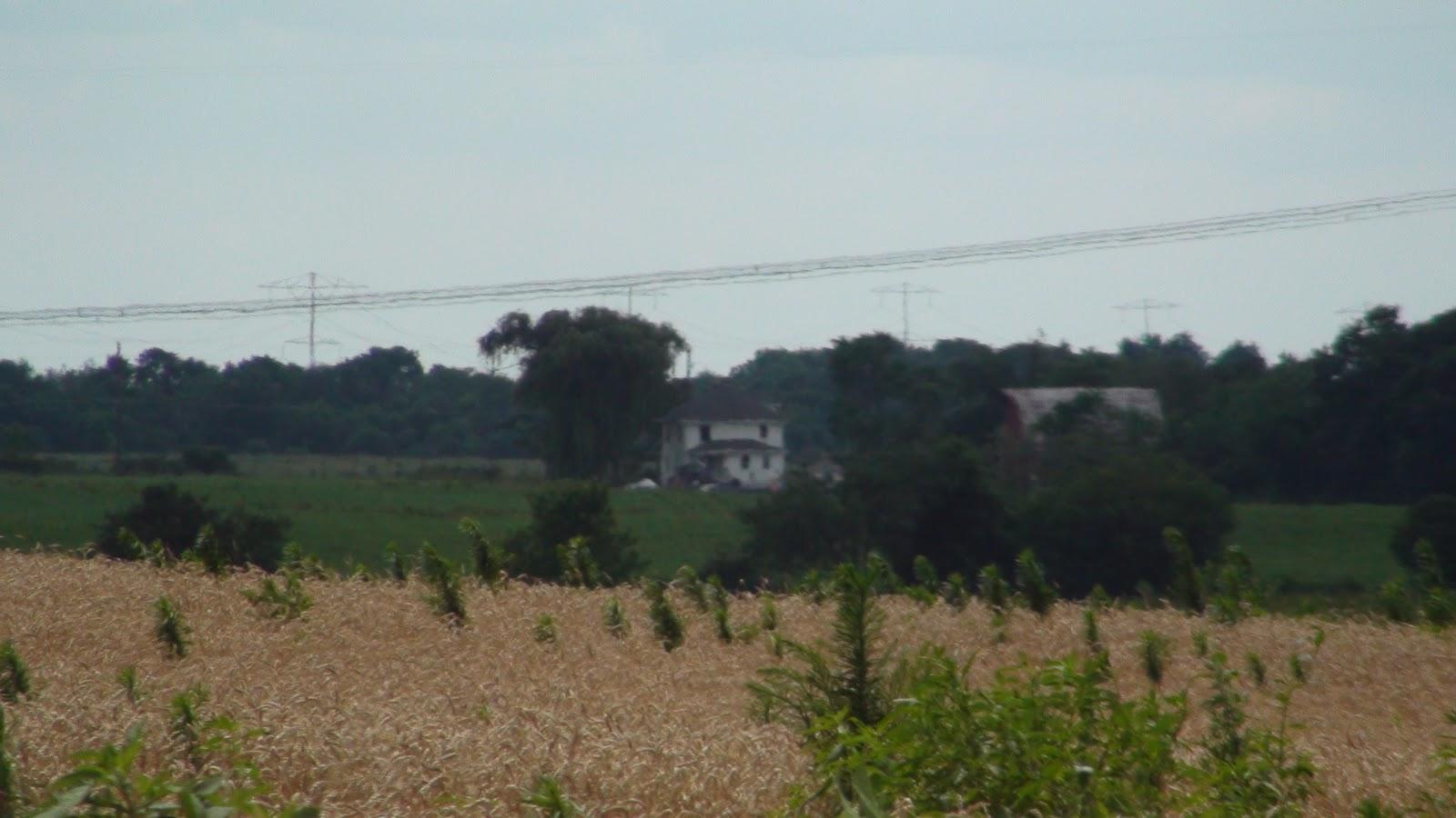 Illinois will county peotone - American Fousquare Farmhouse Near Manhattan Illinois Rear View