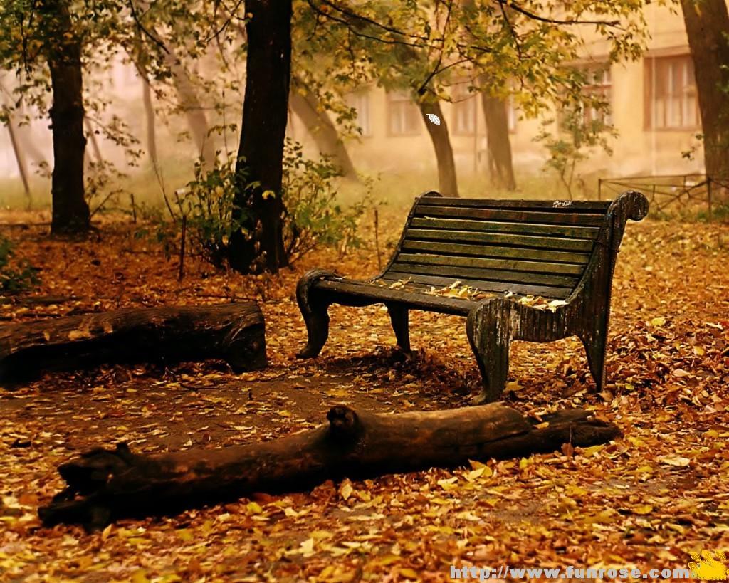 http://1.bp.blogspot.com/_SbTDN-mRWfw/TNot1BwTSmI/AAAAAAAAAQM/F0nI4TFNxoc/s1600/autumn-wallpaper1.jpg