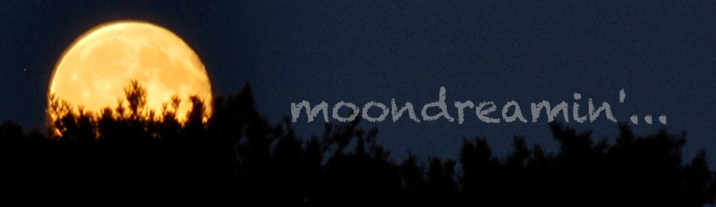 moondreamin'...