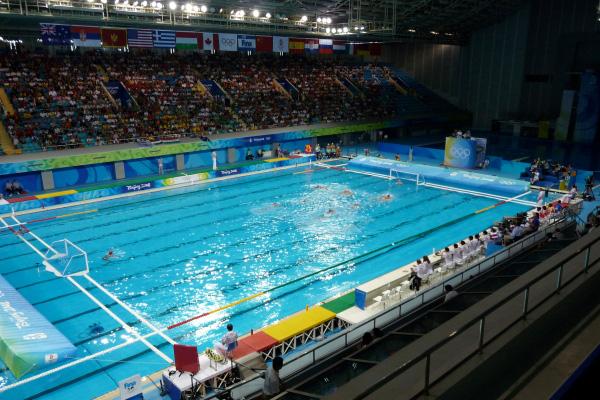 Dolci decori il campionato di pallanuoto - Ipoclorito di calcio per piscine ...