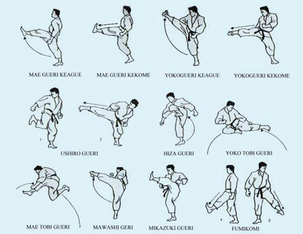 Shotokan armas bases e defesas do karat for Kung fu technique de base pdf