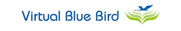 Official Virtual Blue Bird blog - virtual assistance services in London