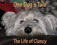 Clancy's Blog