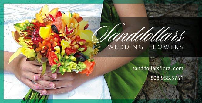 Sanddollars floral