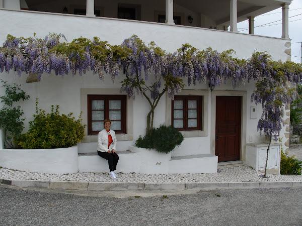 """A """"Casa da Ti Lúcia"""", do Dário."""