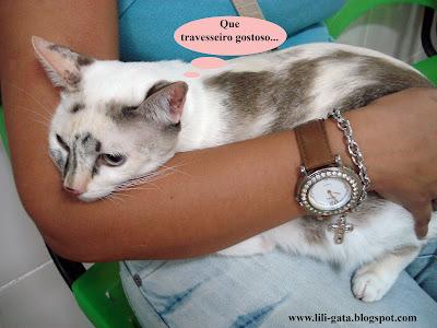 Gata Lili nos braços da mamãe Renata Góes, na espera do veterinário