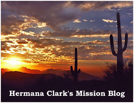 Hermana Clark's Mission Blog