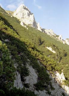 Wandern Höhenweg im Kaisertal - Zahmer Kaiser 22