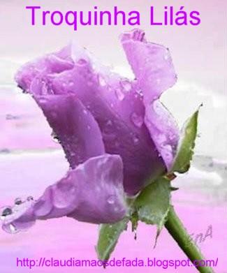 [Flor+lilás+de+orvalho.JPG]