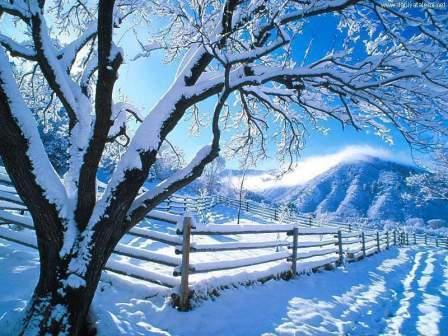 ruyada kar gormek