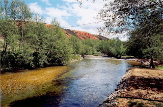 Río Duerna, rico en Ajomate. Image: Wikipedia