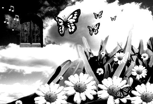 Butterfly Dreaming is lovely