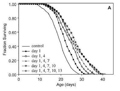 Hormesis: heat shocks and lifespan in roundworms