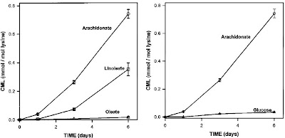 AGE formation from glucose and lipids