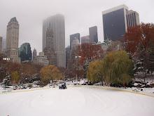 inverno neoiorquino