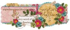 Scripture Challenge 2010