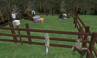 Virtual horses in Second Life