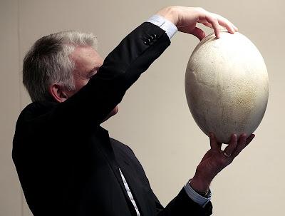 http://1.bp.blogspot.com/_SqhhJb_P3Kk/SdDQg1Z3wkI/AAAAAAAAGII/YuUnErt5fZM/s400/Great+Elephant+Bird+egg.jpg