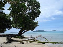 Tongan Beach