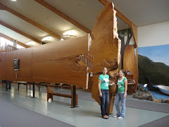 Kauri Museum