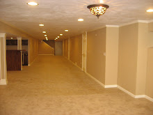 Finished Basement, N.W. side, Crown molding, trim, doors