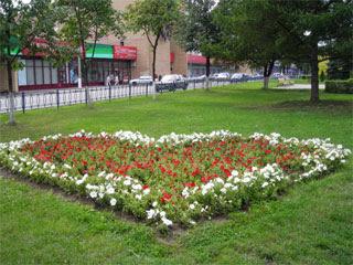 Сердечко из цветов