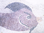 Mosaico con detalle de pez