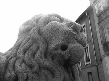 León junto catedral de Avila