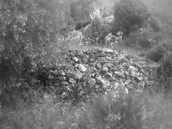 Castro celtíbero del Cerro de la Cabeza