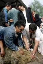 sacrifice musulman de mouton à Grigny ait el kebir