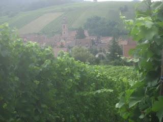Riquewihr to Bennwihr – Hiking in Alsace