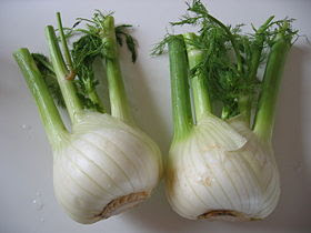 Fine Old Fennel