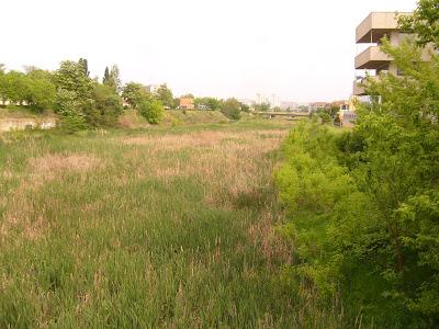 Yambol's Tunzdha River Comes To Life