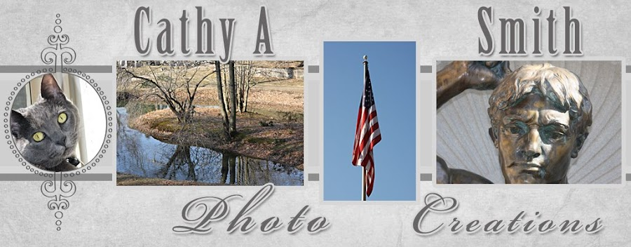 Cathy A Smith Photo Creations