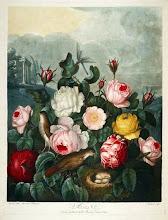 El Templo de Flora
