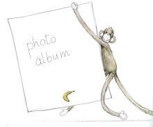 Signori Bambini's pics