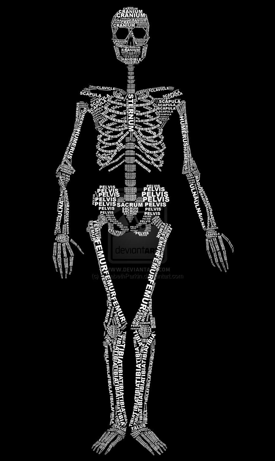 [typoskeleton]