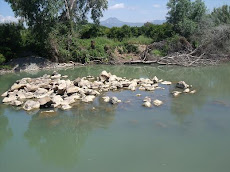 El rio Guadiaro donde se hará la presa